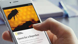 Here Are The Ad Types Facebook's Instant Articles Will Allow - CMO Today - WSJ