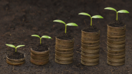 How to Turn Year-End Givers into Life-Long Donors | The Digital Drip