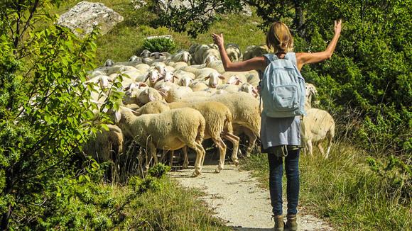 """Bibi""""s Blog over het leven in de Abruzzen"""