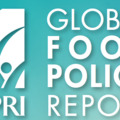 2016 Global Food Policy Report - IFPRI