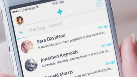 LiveNinja Combines Live Web Chat And Messaging