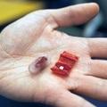 [繁] MIT 打造醫用微型摺紙機器人,藏身膠囊吞到胃內撿異物