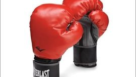 Everlast's eCommerce Search Push