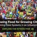 Growing Food for Growing Cities: Transforming Food Systems in an Urbanizing World - Chicago Council on Global Affairs