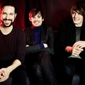 Donnerstag - Puggy (be)