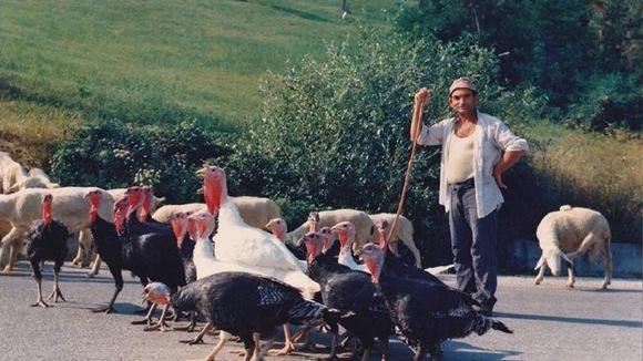 Bibi´s blog | Vakantie over de grenzen van Marche en Abruzzo - Italië met Dolcevia.com