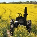 The Next Phase For Agriculture Technology - Forbes