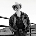 Seasick Steve (us)