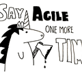 Why Everyone Is Agile | Heart Healthy Scrum