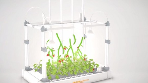 Opcom Farm introduces two high-tech hydroponic home gardening systems - Hortidaily