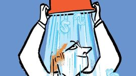 What Happened to the Ice Bucket Challenge? - The New Yorker