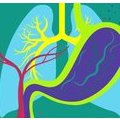 [英] An Interactive Guide to Nutrition and the Human Body