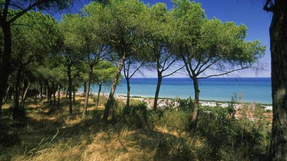 Bibi´s blog | Over witte stranden en zwarte kippen - Italië met Dolcevia.com