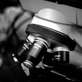 體內遙測成真!科學家發明可植入人體的「神經塵」