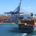 U.S. import prices unexpectedly rise in July | Reuters