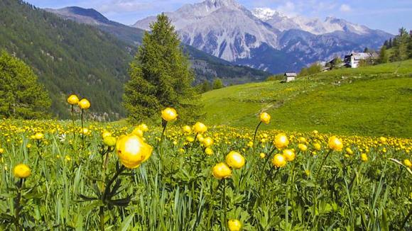 Touren in Piemonte, met de een tweewieler de regio ontdekken - Italië met Dolcevia.com