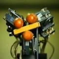 [簡] 機器人從什麼時候開始抓取的(上)