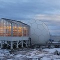 Growing tomatoes and cucumbers in Antarctica? - HortiDaily