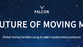 BitX: Introduction to the basic concepts of FALCON
